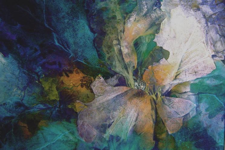 C. A. Evans Mixed Media Hybrid Iris
