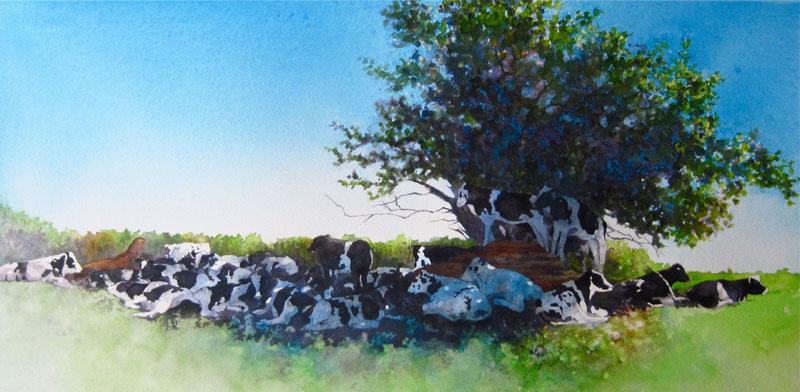 C. A. Evans Art | Watercolor | Cow Pile